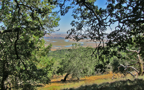 View from Mt. Burdell - Olompali State Historic Park
