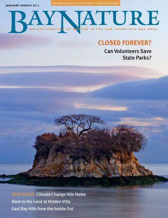 Bay Nature January - March 2012 cover, courtesy of Bay Nature