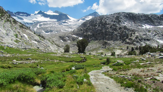 Valley and meadows beneath Mount Lyell in Yosemite National Park. Mt. Lyell is the park's highest peak at 13,114 feet. Photo by Christine Sculati.